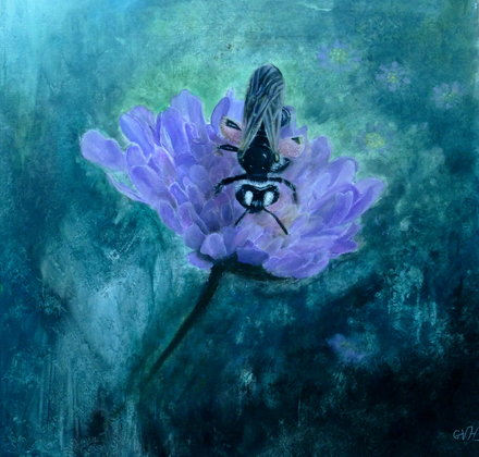 Large Scabious Mining Bee 80x80 cm