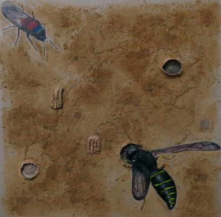 The spiny mason wasp 70x70 cm